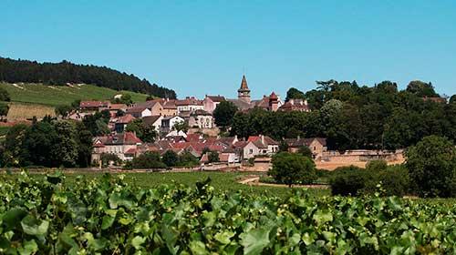 ruta-vino-en-francia